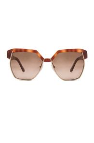 Chloe Dafne Sunglasses in Brown