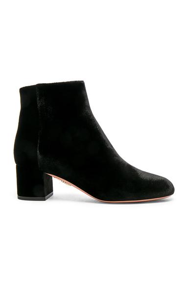 Aquazzura Velvet Brooklyn Booties in Black