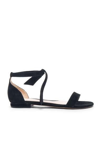 Alexandre Birman Clarita Sandals in Black