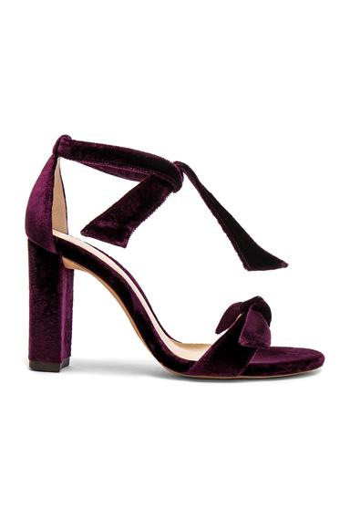 Alexandre Birman Velvet Clarita Block Heels in Purple
