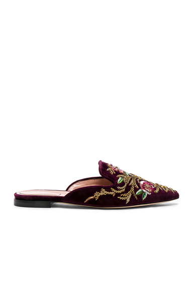 ALBERTA FERRETTI Velvet Embroidered Mules in Red