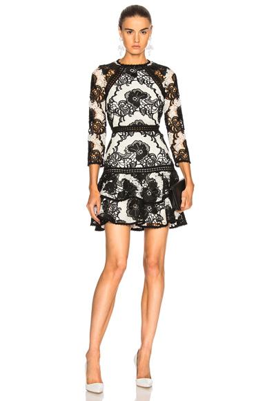 Alexis Sheena Dress in Black, White, Floral