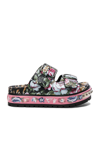 Alexander McQueen Leather Sandals in Pink, Floral