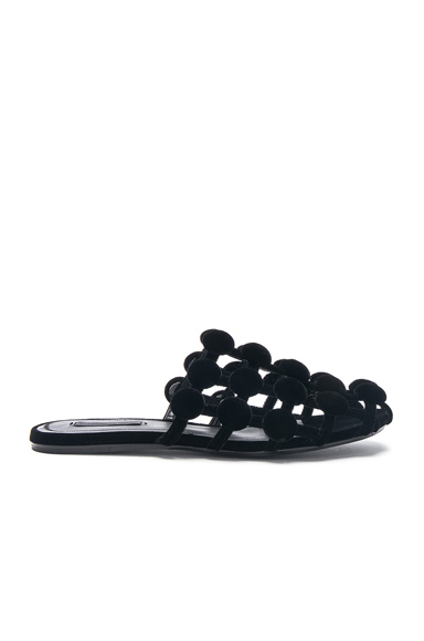 Alexander Wang Velvet Amelia Slides in Black