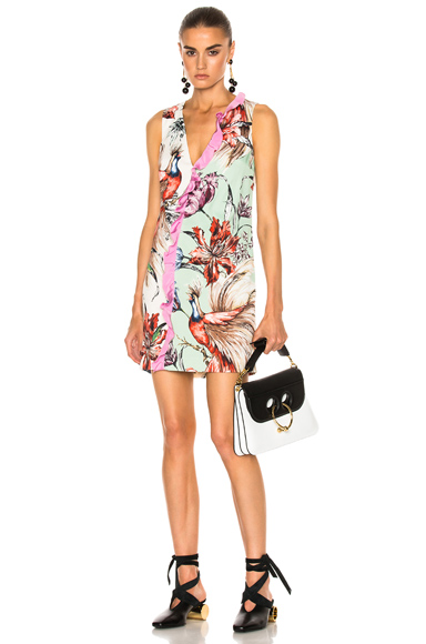 Fausto Puglisi Print Dress in Floral, Green, Neutrals