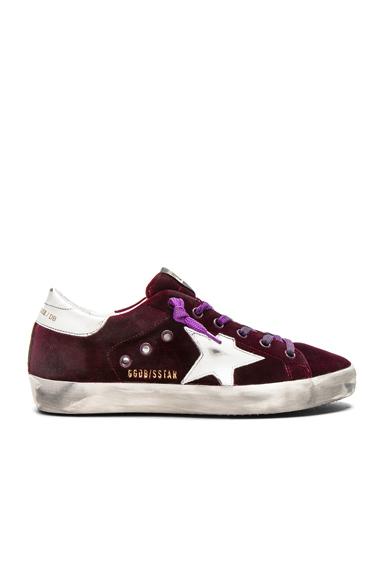 Golden Goose Velvet Superstar Sneakers in Purple