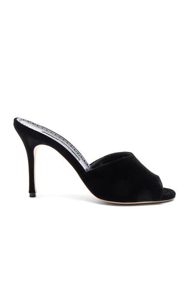 Manolo Blahnik Velvet Bartuslo Sandals in Black