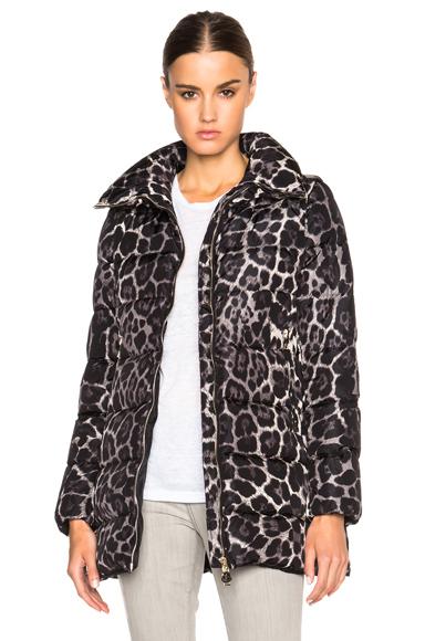 Moncler Torcelle Leopard Print Coat in Animal Print, Black