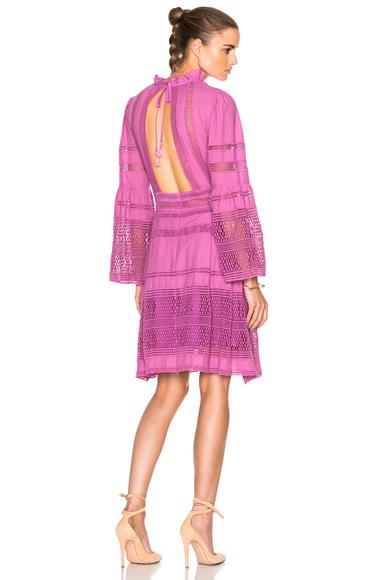 Sea Baja Lace Long Sleeve Dress in Purple