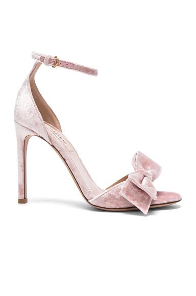 Valentino Velvet Bow Heels in Pink