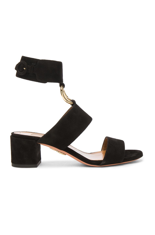 Photo of Aquazzura Suede Safari Sandals in Black online sales
