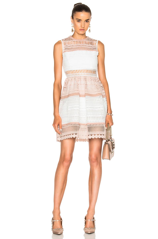 Alexis Melania Dress in Neutrals,Pink,White