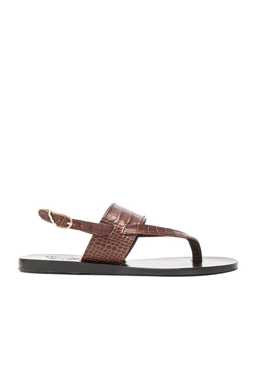 Ancient Greek Sandals Croc Embossed Leather Zoe Sandals in Brown,Animal Print