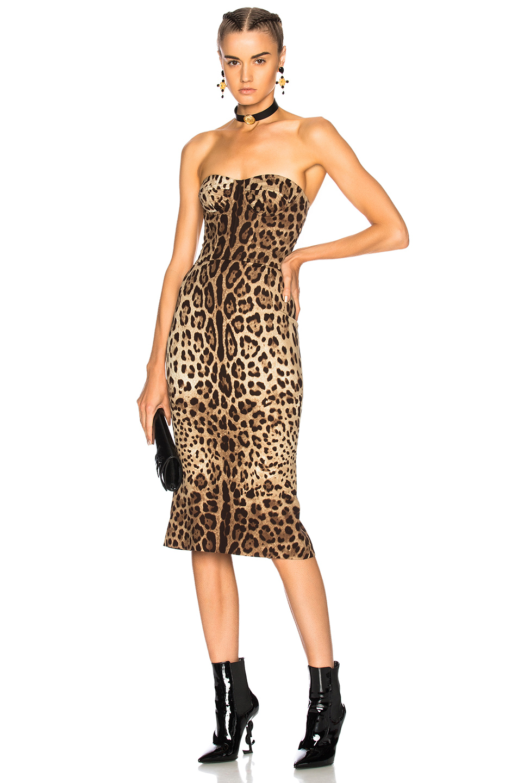 Dolce & Gabbana Strapless Midi Dress in Animal Print,Neutrals