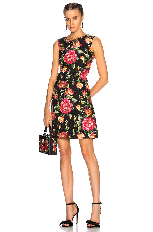 Dolce & Gabbana Floral Sleeveless Mini Dress in Black,Floral