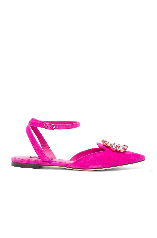Dolce & Gabbana Suede Belucci Flats in Pink