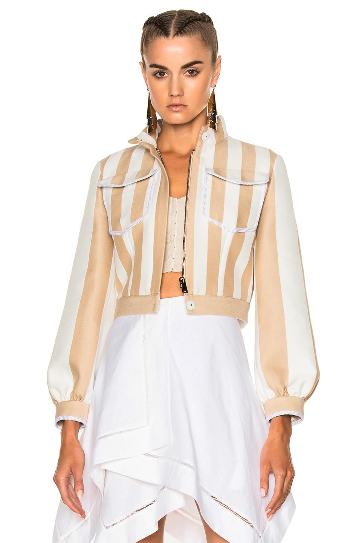 Fendi Cropped Zip Jacket in Neutrals,Stripes,White