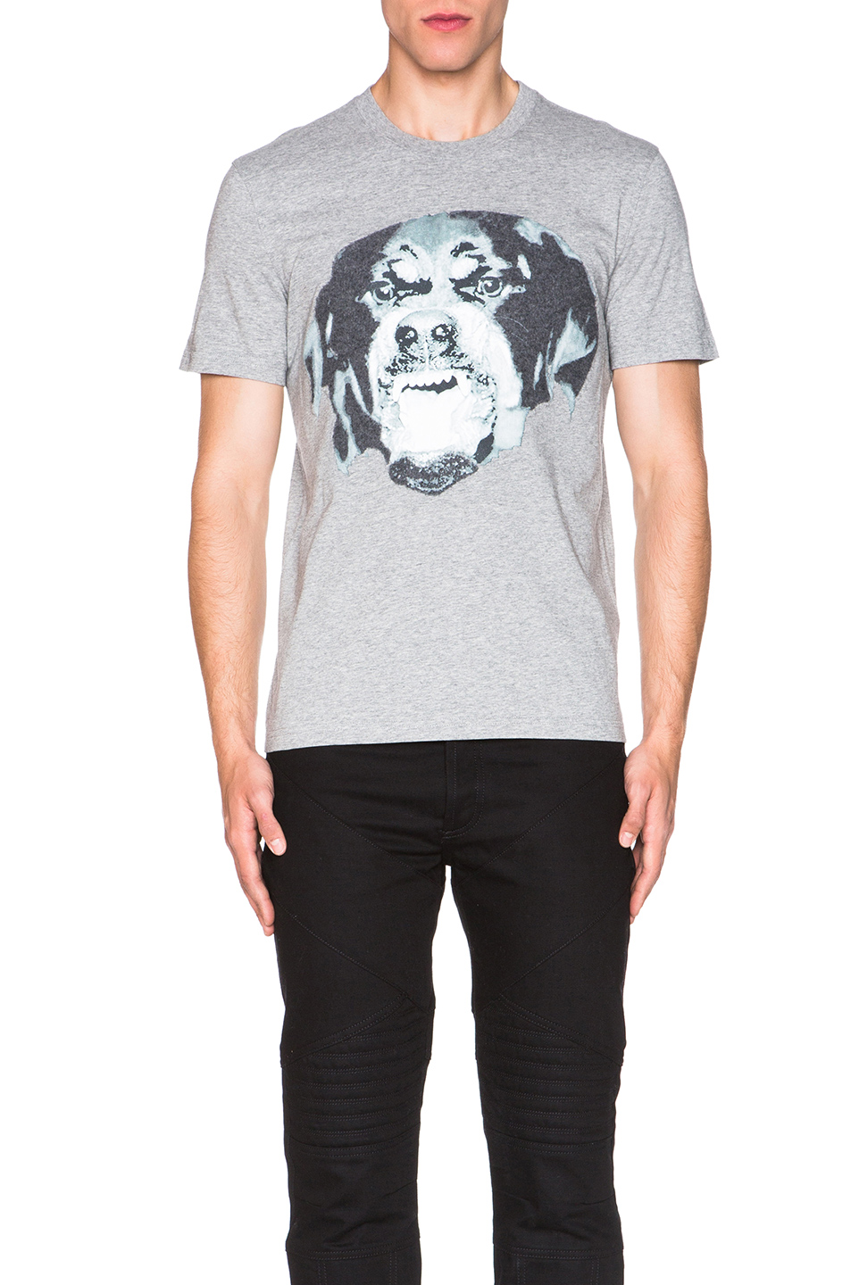 Givenchy Cuban Fit Rottweiler Tee in Gray