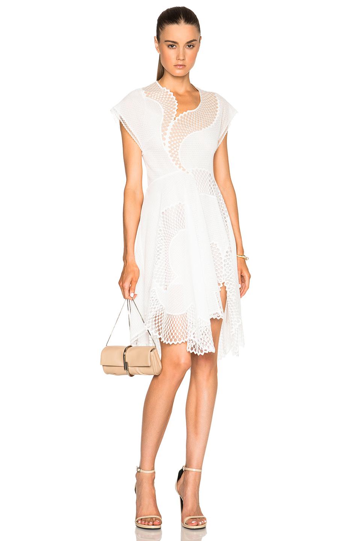 Stella McCartneyClotilde Mesh Dress in White