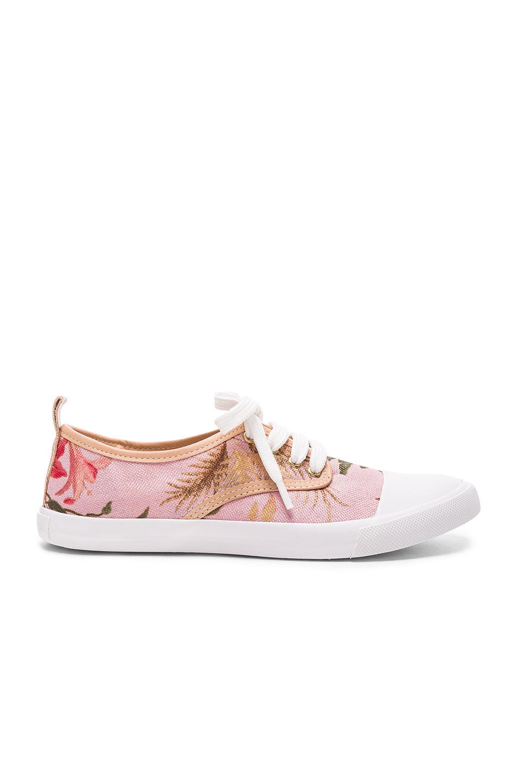 Zimmermann Print Sneakers in Pink
