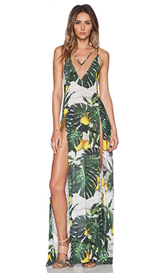 ADRIANA DEGREAS Tropical Maxi Dress in Green