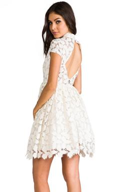 Alice + Olivia Jayna Lace Open Back Flare Dress in Cream