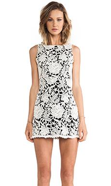 Alice + Olivia Jolie Sleeveless Mesh Back Dress in Cream & Black