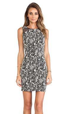 Alice + Olivia Thalia Sleeveless Dress in Black & White