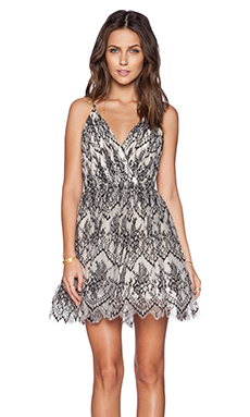 Alice + Olivia Cara Flared Dress in Black & Ivory