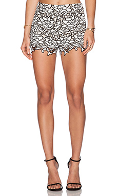 Alice + Olivia High Waisted Lace Short in Black & White
