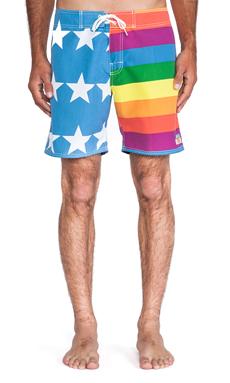 Ambsn Rainbow Boardshort in Multi