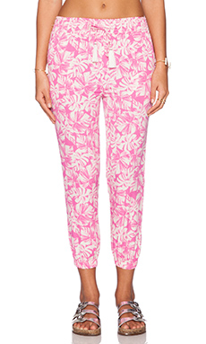 AMUSE SOCIETY Traveler Pant in Vivid Magenta