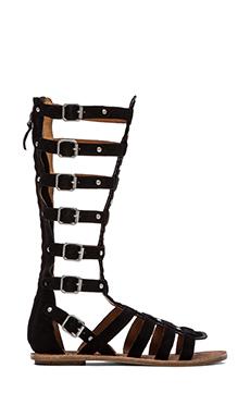 Ash Nymphea Gladiator Sandal in Black