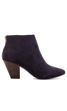 Ash Golden Bis Bootie in Midnight