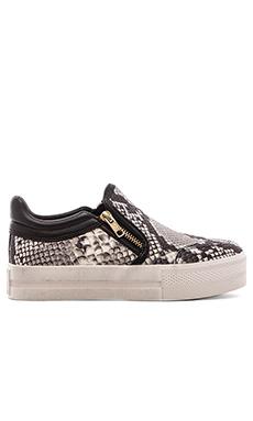 Ash Jordy Sneaker in Roccia & Black