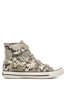 Ash Virgin Sneaker in Roccia