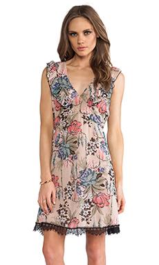 Anna Sui Cabbage Rose Print Dress in Blush Multi