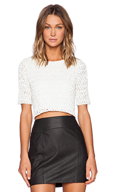 Alexis Lucca Picket Fence Crop Top in White
