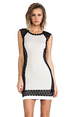 Bailey 44 Eva-Marie Dress in Black & Beige