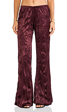 Band of Gypsies Velvet Flare in Burgundy