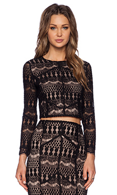Bardot Lace Crop Top in Black