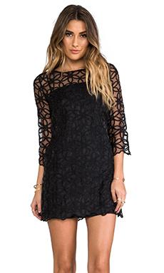 BB Dakota Zelma Floral Organza Mini Dress in Black