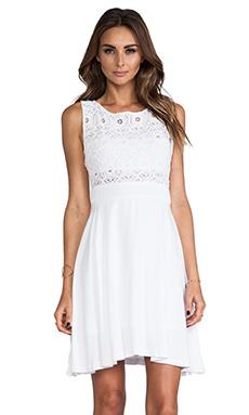 BB Dakota Sela Mini Dress w/ Lace Top in Optic White