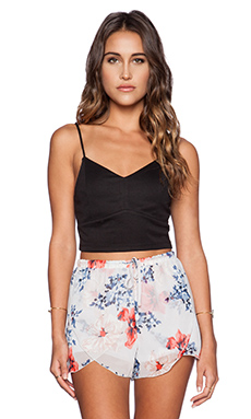 Jack by BB Dakota Draven Crop Top in Black
