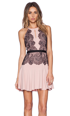 BCBGMAXAZRIA Leyla Dress in Shadow & Blush Combo