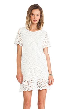 BLAQUE LABEL Dress in Cream