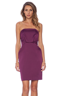 Cameo Play With Fire Mini Dress in Plum
