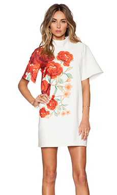 Cameo Jerome Dress in Red Blossom