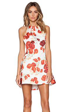 Cameo About You Dress in Red Blossom