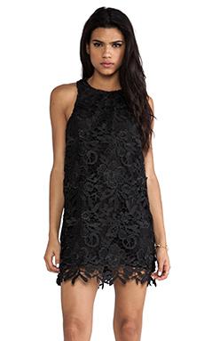 Cameo Spellbound Dress in Black